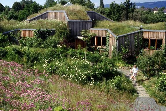 13 Arquitectura Ecológica y Sostenible: Especialista Gernot Minke.